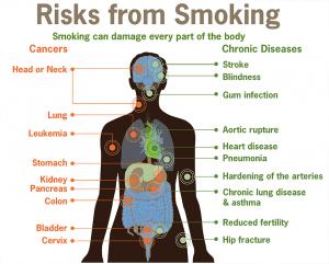 smoking-web-2